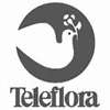 Courier service Los Angeles by teleflora